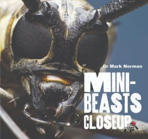 Mini Beasts Close Up - Wild Dog Books