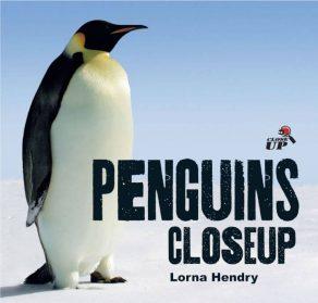 Penguins Close Up - Wild Dog Books