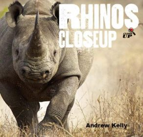 Rhinos Close Up - Wild Dog Books