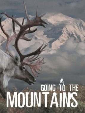 Going To Mountains - Wild Dog Books