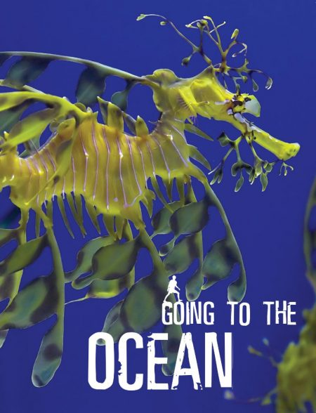 Going To The Ocean - Wild Dog Books