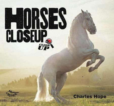 Horses Close Up - Wild Dog Books