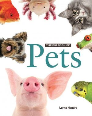The Big Book of Pets - Wild Dog Books