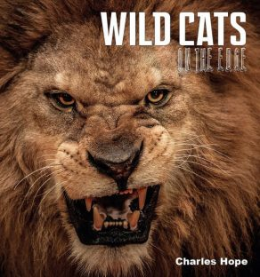 Wild Cats on the Edge - Wild Dog Books