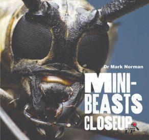 Mini Beasts Close Up - Wild Dog Books