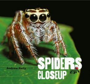Spiders Close Up - Wild Dog Books