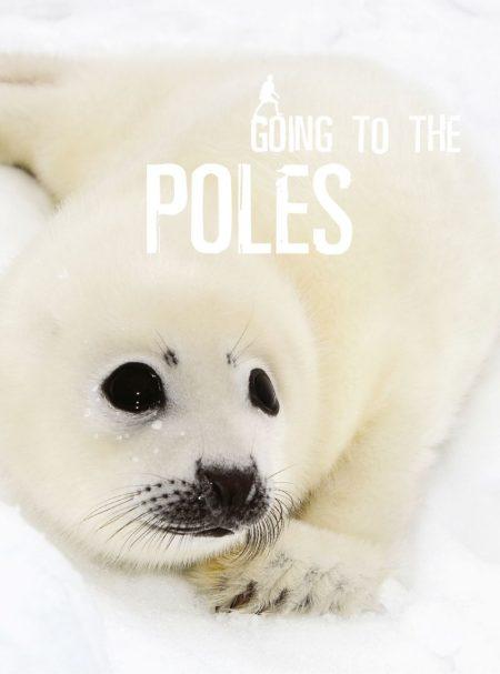 Going To The Poles - Wild Dog Books