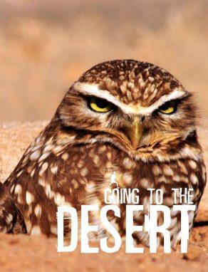 Going To The Desert - Wild Dog Books