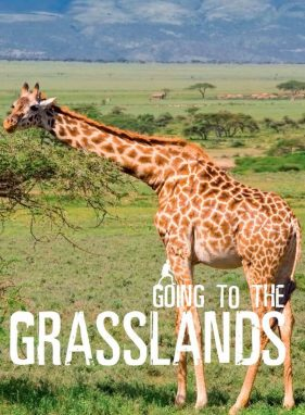 Going To The Grasslands - Wild Dog Books