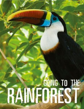 Going To The Rainforest - Wild Dog Books
