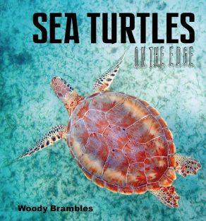 Sea Turtles on the Edge - Wild Dog Books